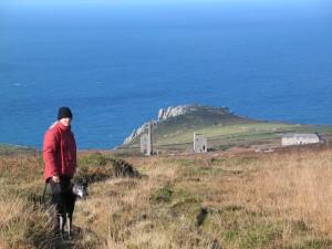Walking the moors