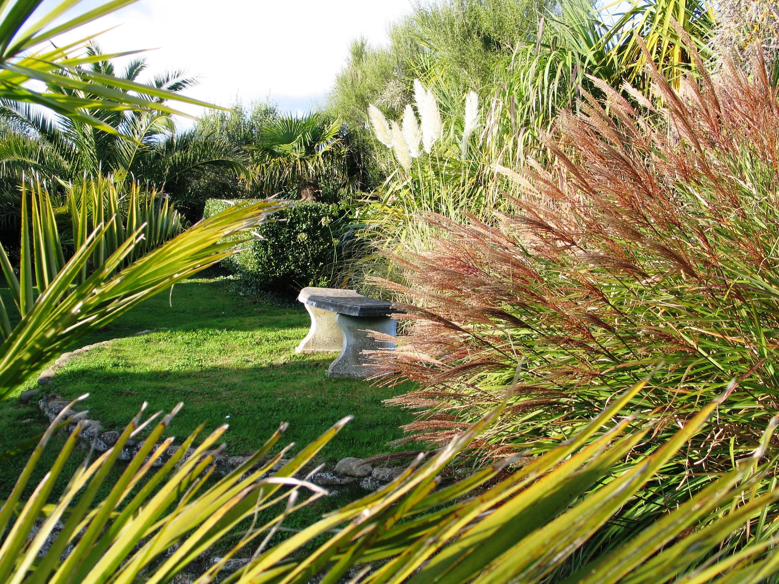 Sheltered coastal garden in Cornwall