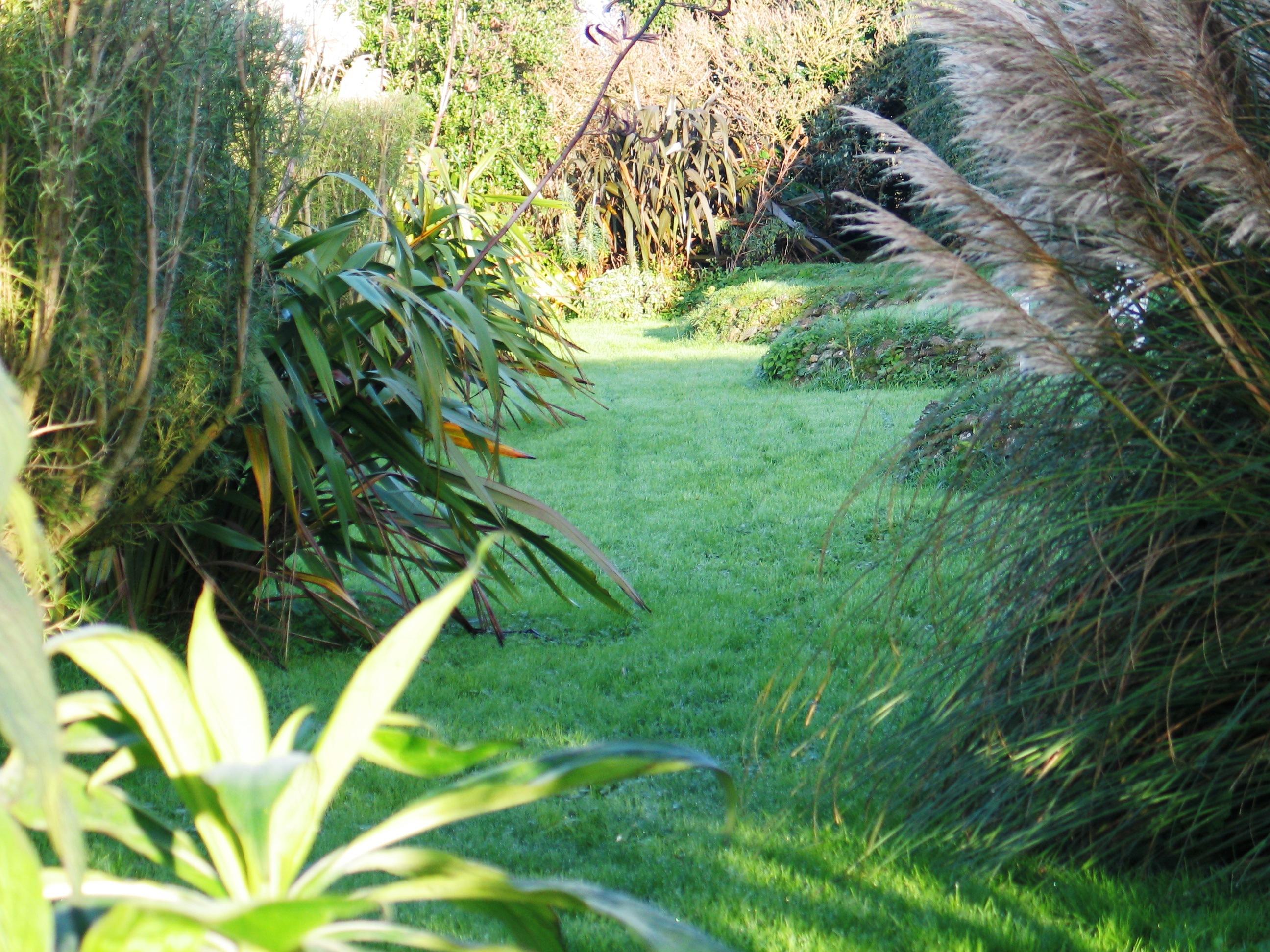 Ednovean Farm's garden in November