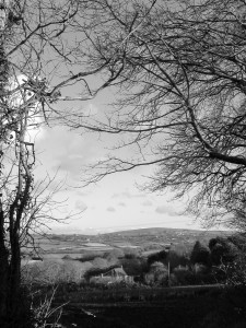 January landscape west Cornwall