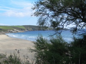 Perranuthnoe's golden sandy beach known locally as Perran Sands