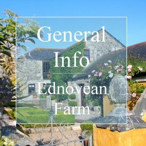 General info about Ednovean Farm - traditional farmhouse