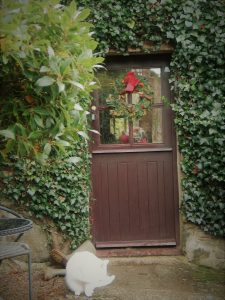 Cottage style door with Christmas wreath and washing cat