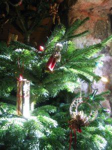 traditional christmas tree at Ednovean Farm