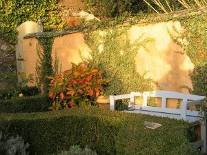 SSoft golden light on an old stone wall witha painted bench and autumn colours