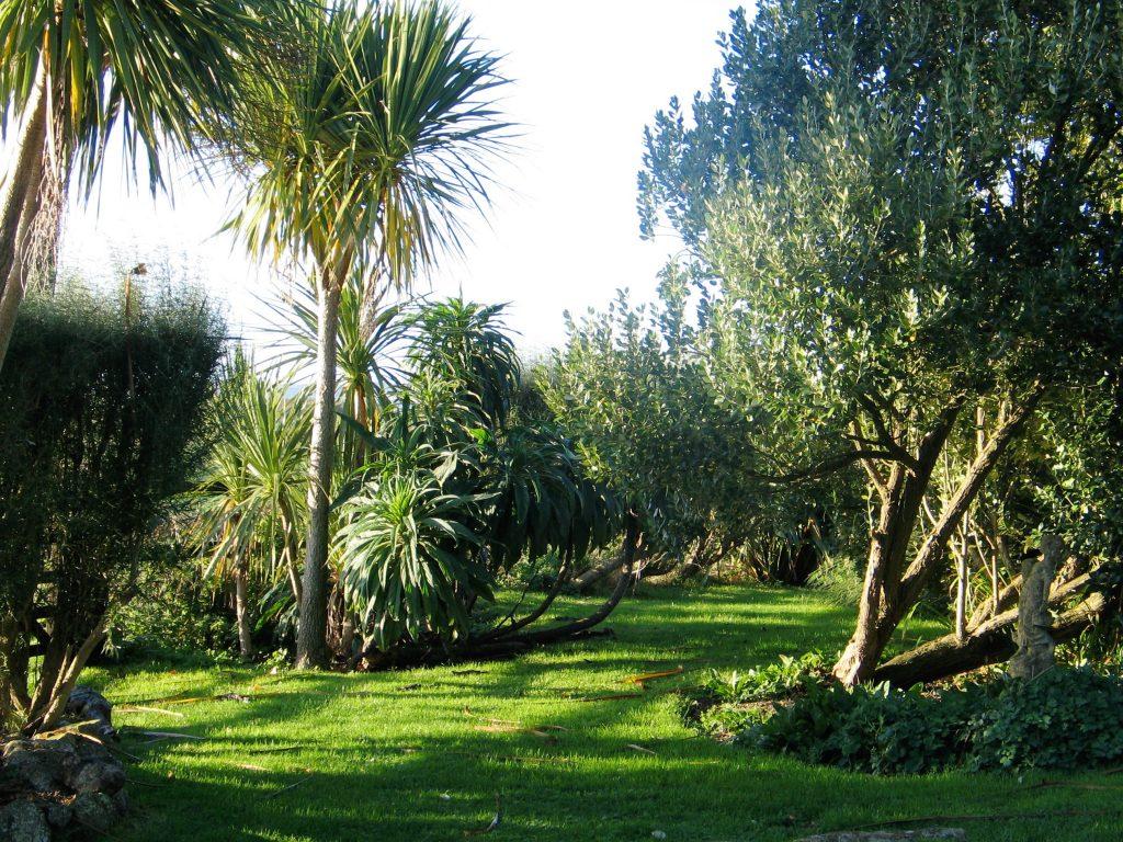 follow autumn in our garden at ednovean farm through our photos albums