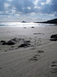 footprints on a secluded beach
