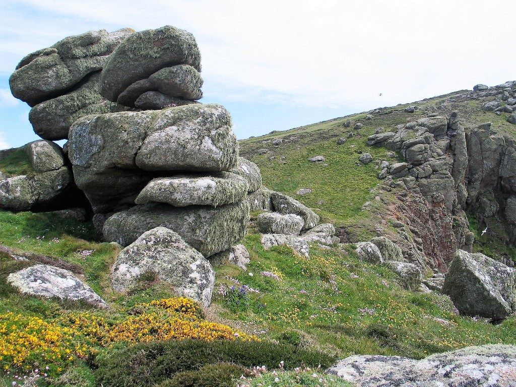 granite outcrop land's end with wild flowers
