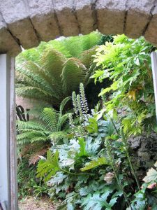 Lush planting through an archway
