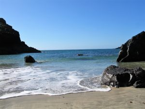 turquoise seas blue skies - kynance cove