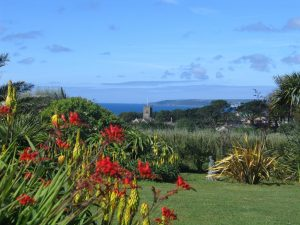 Diary of a sub tropical Cornish garden - Ednovean Farm a luxury Bed and Breakfast