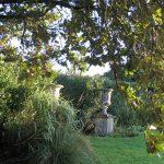 Summer fades - 2017 garden diary