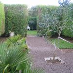 March and a garden project - formal formal garden