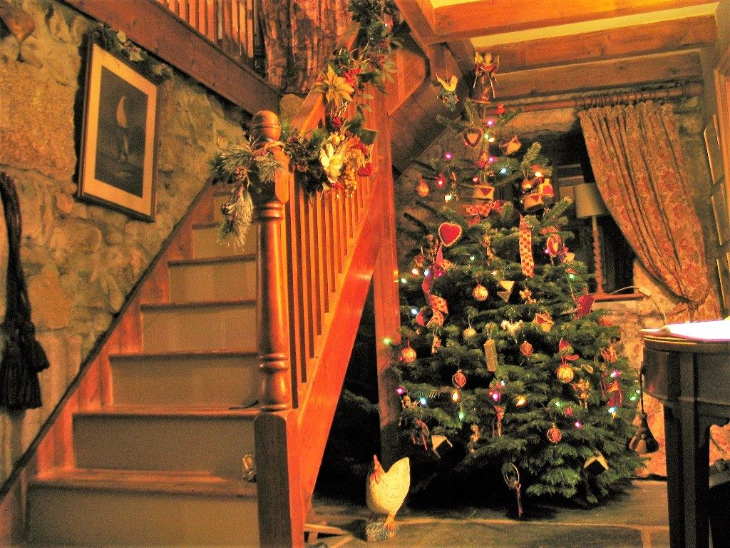 our old familiar friend the traditional christmas tree