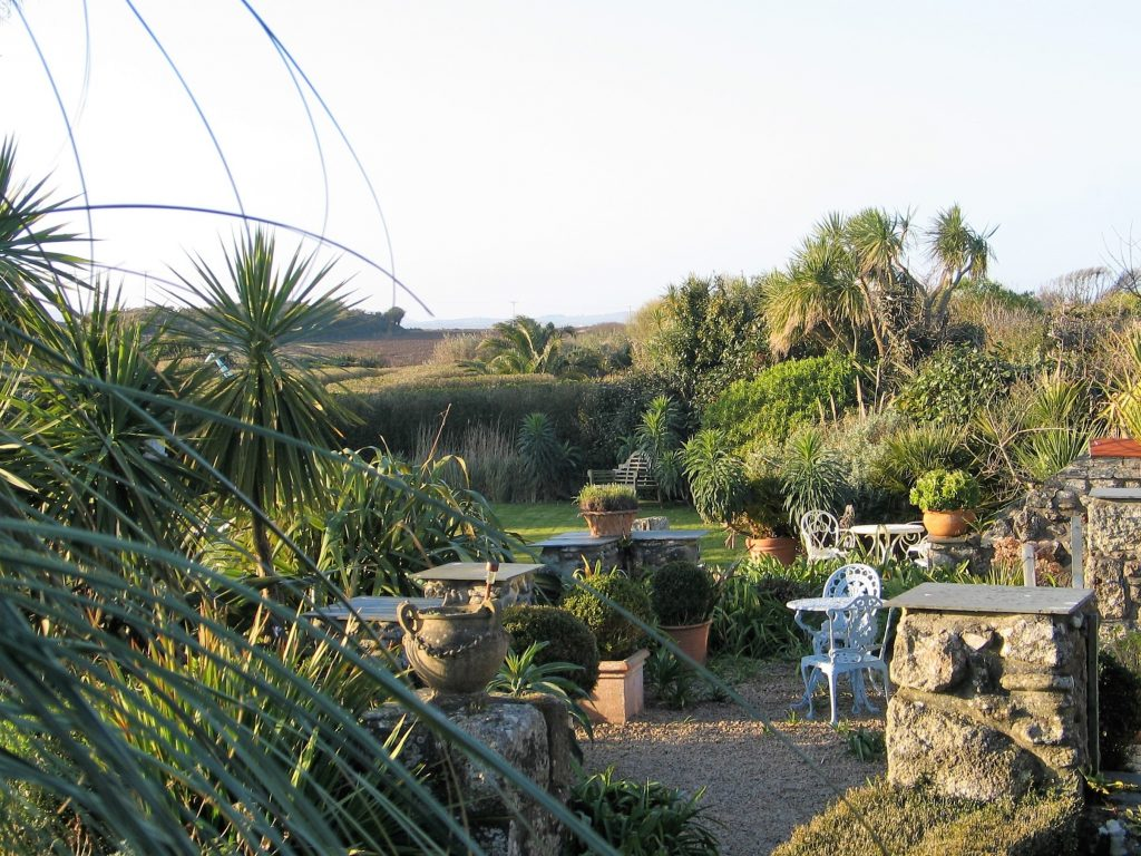 Golden light of spring on the terrace lined with terracotta pots filled with box balls - garden diary