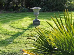 Lawn spiral - April garden diary