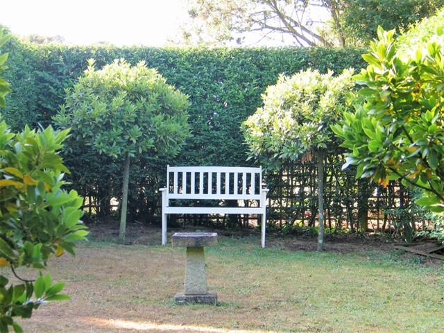 Shaded Bench in formal garden
