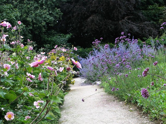 brushing through a flower lined path
