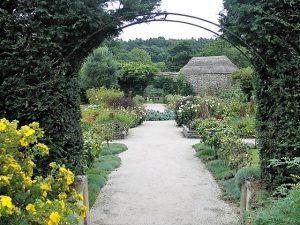 path through potager - Bonython gardens