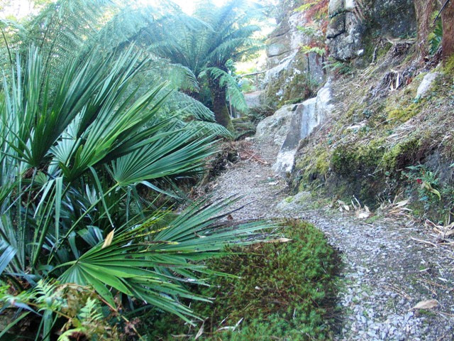 Granite outcrop in a cornish garden