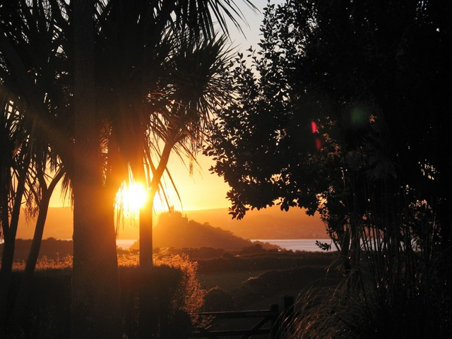 Palms and St Michael's Mount silhouetted against the sunset - autumn season