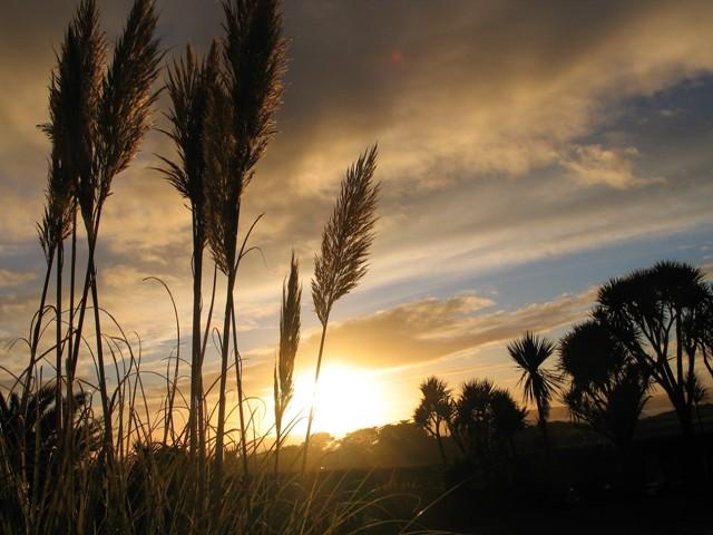 Autumn sunset - latest news for Ednovean Farm
