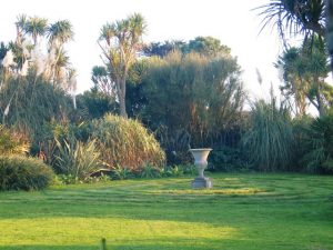 Ednovean Farm's garden in November - garden diary