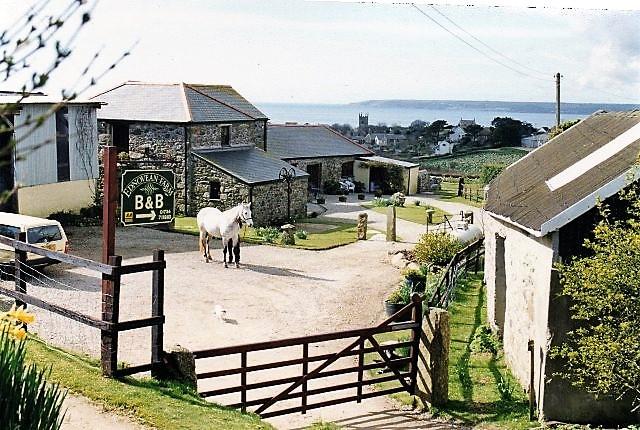 vintage Ednovean Farm 1991