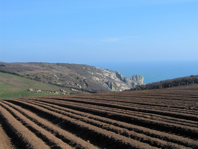 Woked fields give way to cornish clifftops